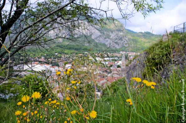 Wildflowers overlooking the town of Tarascon-sur-Ariege in southern France