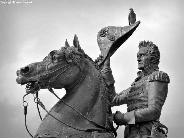 Black and white photo showing closeup of Andrew Jackson sculpture in Washington, DC