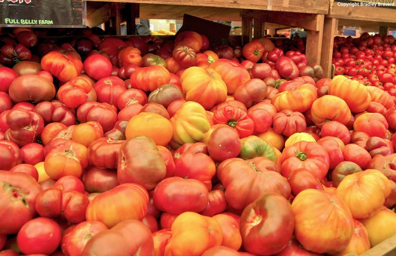 Photograph of large bin of tomatoes in produce market