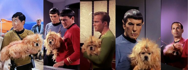 """From Star Episode """"The Enemy Within,"""" images of various crew members carrying dog in unicorn costume"""