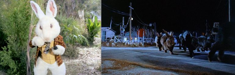 Image of white rabbit from Star Trek episode Shore Leave (left) and image of giant rabbits on country road from 1972 movie Night of the Lepus (right)
